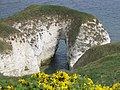 Chalk cliffs - geograph.org.uk - 505630.jpg