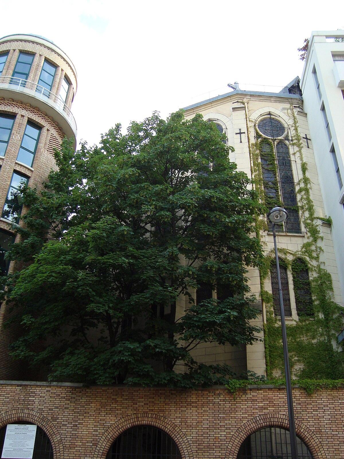 Catedral de nuestra se ora del l bano par s wikipedia for Paris libre
