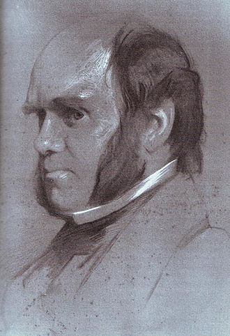 Portraits of Charles Darwin - Image: Charles Darwin drawing by Samuel Laurence, 1853, alternative