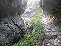 Cheile Corcoaiei - panoramio.jpg