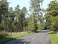 Chester Road, Enville Common, Staffordshire - geograph.org.uk - 1005576.jpg
