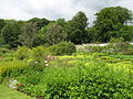 Chesters Walled Garden - the Mediterranean and Roman Gardens - geograph.org.uk - 1461289.jpg