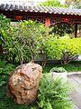 Chinese Garden in Sydney (02).jpg