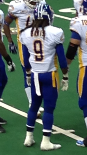 Chris Davis (wide receiver, born 1984) - Davis with the Storm in 2013