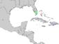 Chrysophyllum oliviforme range map 3.png