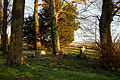 Church of St Mary, Stapleford Tawney, Essex, England - churchyard southeast 1.jpg