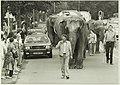 Circus, NL-HlmNHA 5400467137.JPG