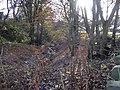 Clough adjacent to Lomas Lane - geograph.org.uk - 1053710.jpg