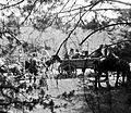 Coach, second World War Fortepan 75419.jpg
