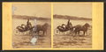Coach on the beach, from Robert N. Dennis collection of stereoscopic views 4.png