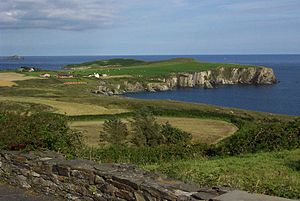English: Coast near Castletownshend, County Co...