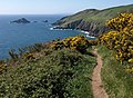 Coast path approaching Pudcombe Cove - geograph.org.uk - 1266986.jpg