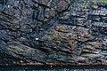 Coastline St John Newfoundland (41321609862).jpg