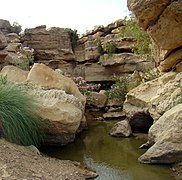 Источник холодной воды в национальном парке Киртхар, Синд, Пакистан.jpg