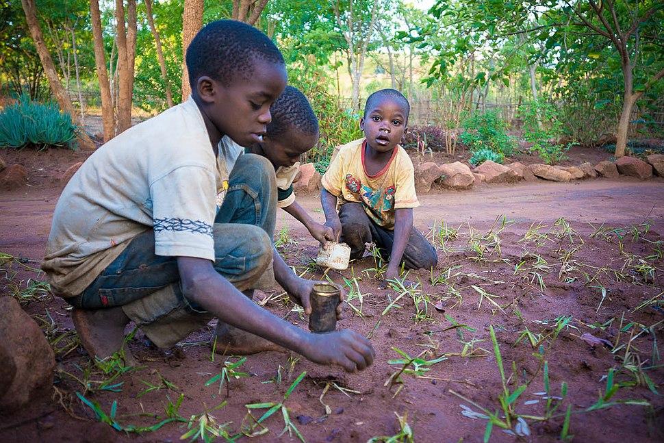 Collecting Ngumbi