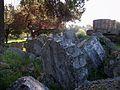 Columnes ensorrades del temple de Zeus d'Olímpia.JPG