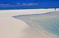 Cook Islands IMG 6146 (8453058430).jpg