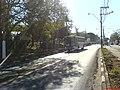 Corredor de ônibus da Av das Amoreiras - panoramio.jpg
