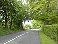 Country Road, Co Meath - geograph.org.uk - 1857622.jpg
