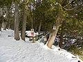 Crawford Lake Trail, Ontario, Canada1.JPG