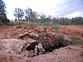 Cueva de Montesinos, Ciudad Real (512649472).jpg
