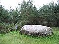 Cumberland's Stone - geograph.org.uk - 219725.jpg