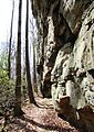 Cumberland-trail-caprock-base-tn1.jpg