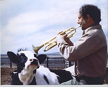 Dad playing the trumpet for the cow.jpg
