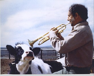 Tony Terran - Image: Dad playing the trumpet for the cow
