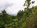 Dalupiri island 101.jpg