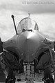 Dassault Rafale (8680134447).jpg