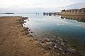 Dead Sea (3272127512).jpg