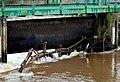 Debris on the Lagan, Belfast (2) - geograph.org.uk - 1779495.jpg