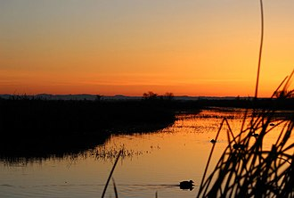 Delevan National Wildlife Refuge - Image: Delevan national wildlife refuge sunrise