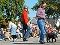 Dennis and Elizabeth Kucinich in the Woolly Bear Festival parade (2922007835).jpg