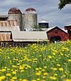 Denver Downs Farmstead