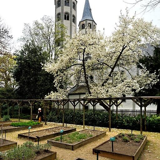 Klostergarten an der Evangelischen Kirche Neuwerk