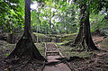 Descubriendo Palenque, Chiapas.JPG