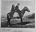 Deux Corses 1904 96323.jpg