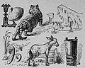 Die Gartenlaube (1892) b 516 2.jpg