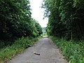 Disused Slip Road, Blue Bell Hill - geograph.org.uk - 1351812.jpg