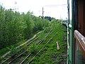 Dmitrovsky District, Moscow Oblast, Russia - panoramio (79).jpg