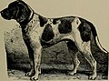 Dogs of all nations. In prose and rhyme (1903) (14583560410).jpg