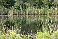 Don Valley Brick Works Park (6584058911).jpg