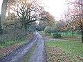 Driveway of Gawcombe - geograph.org.uk - 1598862.jpg