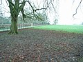 Driveway through Barnsley Park - geograph.org.uk - 315720.jpg