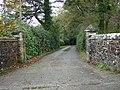 Driveway to Vacye - geograph.org.uk - 599290.jpg