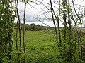 Drummany Townland - geograph.org.uk - 1865353.jpg
