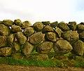 Dry stone wall near Carrick Little - geograph.org.uk - 643367.jpg