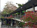Duong di bo tren cao,Pathum Wan, Pathum Wan, Bangkok, Thái Lan - panoramio.jpg